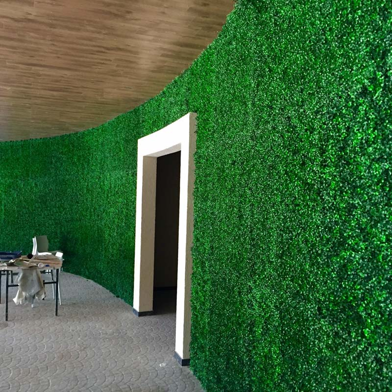 קירות ירוקים
