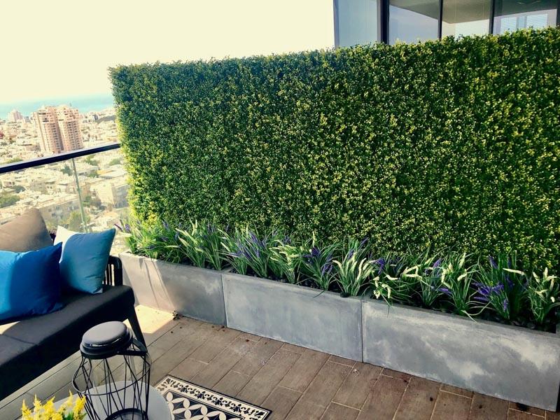 קיר ירוק